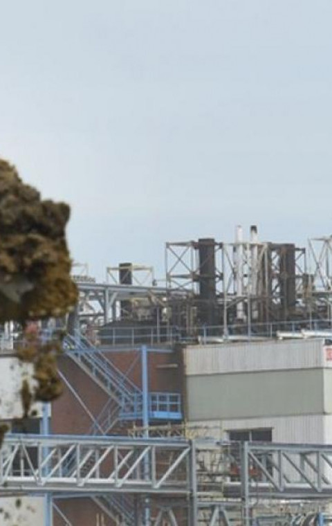 Geen PFOS vervuiling in Sint-Niklaas na bodemanalyse.